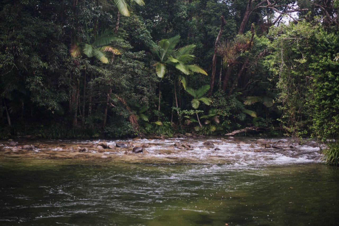 Travel Photography By Anastasia Vervueren Australia Water Tropical River