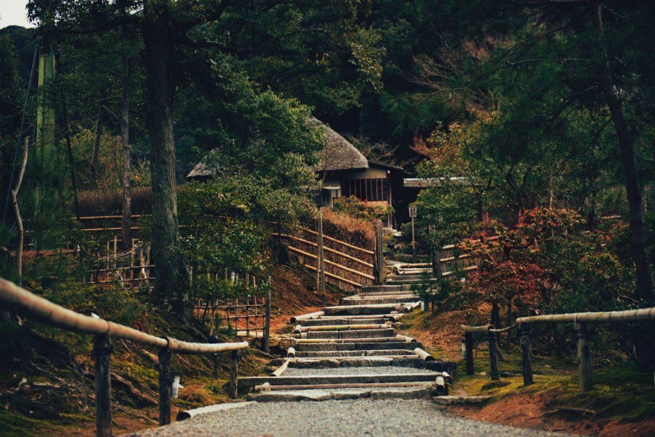 Travel Photography By Anastasia Vervueren Korea