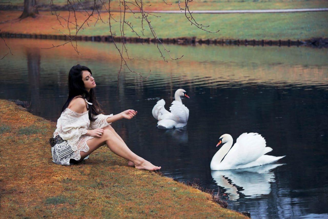 Portrait Photography By Anastasia Vervueren Animal Swan Aurela Skandaj