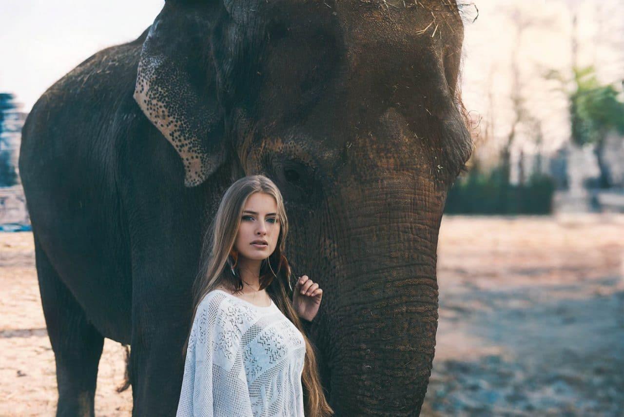 Portrait Photography By Anastasia Vervueren Animal Elephant Camille Rochette