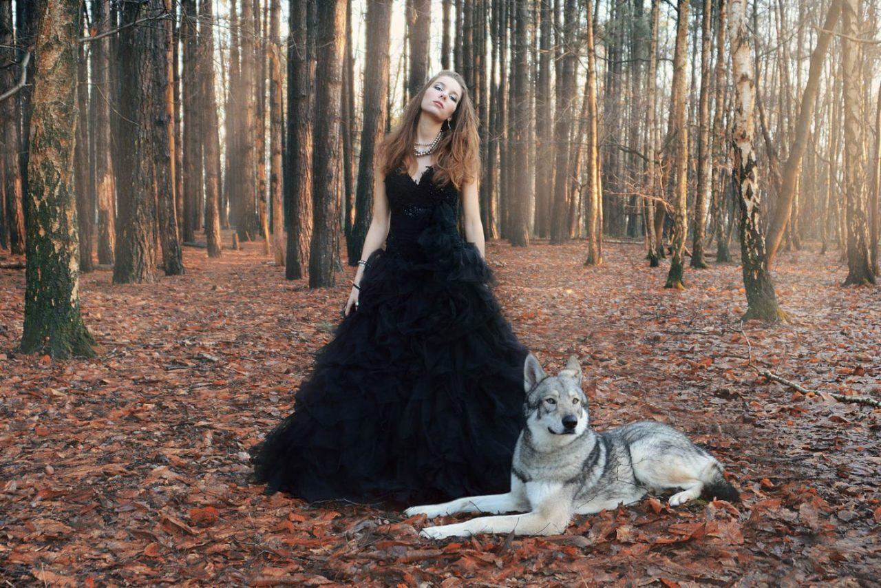 Portrait Photography By Anastasia Vervueren Animal Wolf Digamesi