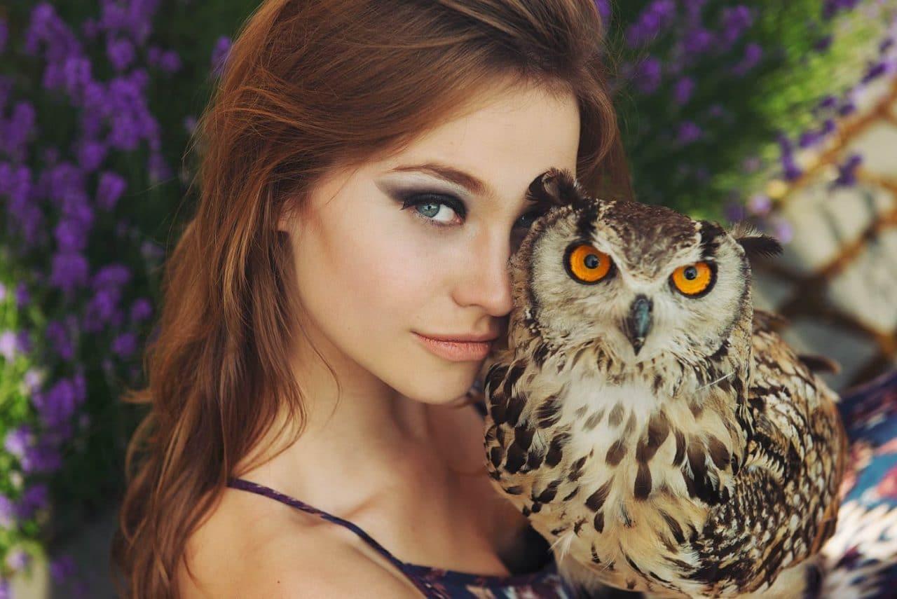 Portrait Photography By Anastasia Vervueren Animal Owl